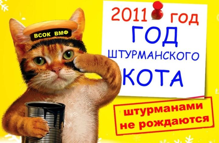 Год кота